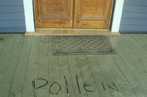 Pollen on my front porch