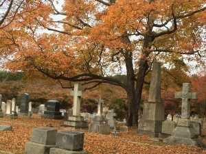 Historic Oakwood Cemetery, Raleigh, N.C.