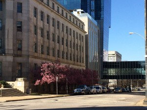 Spring in Downtown Raleigh